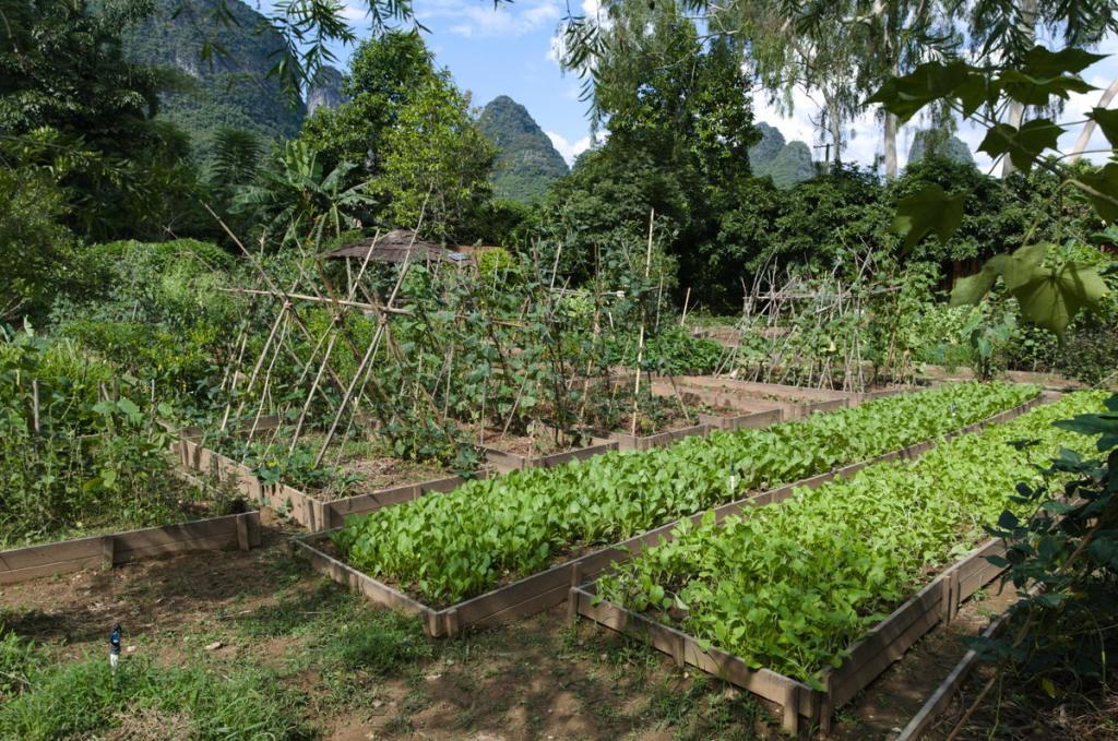Nirvana Farm garden
